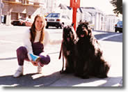 Picture of Carla next to Asterix and Wallie,  two Bouvier de Flanders