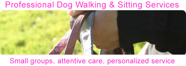 Image of Carla's hand holding leashes with the following written on the image: Professional Dog Walking & Sitting Services. Small groups, attentive care, personalized service.